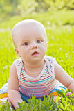Little surprised baby sitting on the grass Royalty Free Stock Image