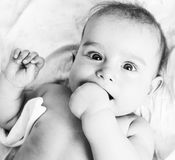 Little sweet baby close up, hand in mouth smart looking Stock Photography