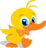 Little sweet duck. Illustration of a cute adorable little duckling Stock Photography