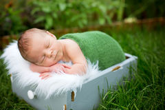 Little sweet newborn baby boy, sleeping in crate with wrap and h. At, outdoors in garden stock photography