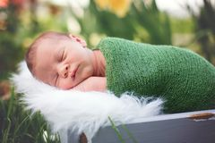 Little sweet newborn baby boy, sleeping in crate with wrap and h. At, outdoors in garden Royalty Free Stock Photography