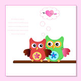 Little sweet owls Stock Photo