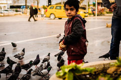 Little Syrian Boy Feeding Pigeons Stock Image