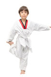 Little tae kwon do boy martial art warm up Royalty Free Stock Photography