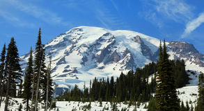 Little Tahoma peak Stock Image