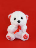 Little Teddy Royalty Free Stock Photography