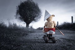 Little Teddy Bear Adventure Trip Royalty Free Stock Images