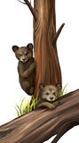 Little teddy-bear bears playing. Fallen tree. Stock Photo