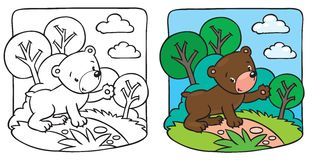 Little teddy bear coloring book Royalty Free Stock Photography