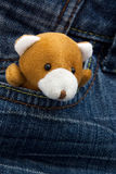 Little teddy bear looking out from jeans pocket. Plush toy bear hiding in jeans pocket Stock Photo