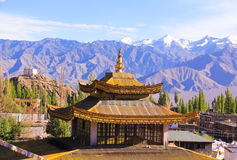 Little Tibet. Buddhist temple in the city of Leh Royalty Free Stock Photos