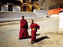 Little Tibetan lama in temple Stock Photos