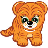 Little tiger Stock Images
