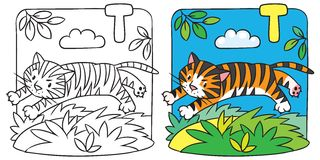 Little tiger coloring book. Alphabet T. Coloring picture or coloring book of little funny tiger jumping out of the jungle. Alphabet T Royalty Free Stock Photos