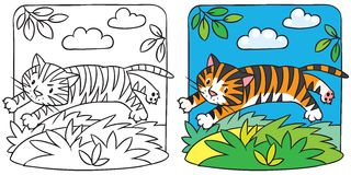 Little tiger coloring book Royalty Free Stock Images