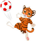 Little Tiger hits the ball. Illustration of little tiger playing soccer Stock Images