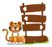 The little tiger Stock Images