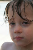 A little tired. A little boy at the pool, hair still wet Stock Images