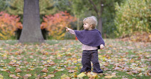 Little toddler in an autumn park Royalty Free Stock Image