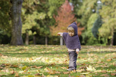 Little toddler in an autumn park Royalty Free Stock Photography