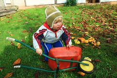 Little toddler with the barrow fall season royalty free stock images