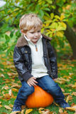 Little toddler with big orange pumpkin in garden Stock Photography