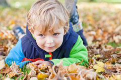 Little toddler boy in autumn park Stock Images