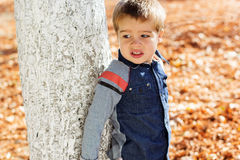Little toddler boy in autumn park Stock Photos