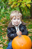 Little toddler with big orange pumpkin in garden Stock Images