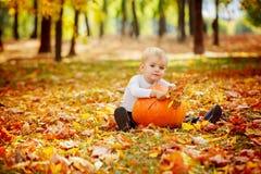 Little toddler boy with big orange pumpkin in autumn garden. Stock Image