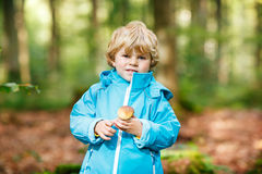 Little toddler  boy in blue waterproof raincoat in autumn forest Stock Photos