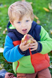 Little toddler boy eating apple Royalty Free Stock Photos