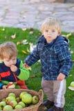 Little toddler boy eating apple Stock Photography