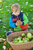 Little toddler boy eating apple Royalty Free Stock Photography