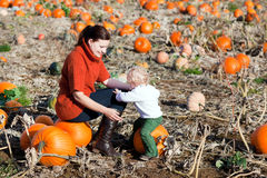 Little toddler boy and his mother on pumpkin field Stock Images