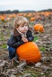 Little toddler boy on pumpkin field Stock Image
