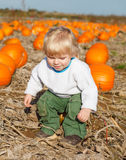 Little toddler boy on pumpkin patch field Royalty Free Stock Photo
