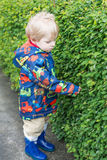 Little toddler boy in rain clothes, outdoors Royalty Free Stock Photography