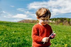 Little toddler boy in red sweater on spring time meadow. In mountains royalty free stock images
