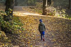 Little toddler boy walking alone through autumn forest. Path in life. Bullying in school concept. Scare and fright. Back Stock Image