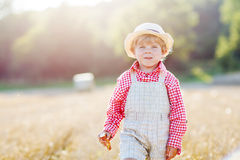 Little toddler boy  walking happily through wheat field Stock Photography