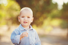 Little toddler boy walking in summer park outdoor Stock Photography
