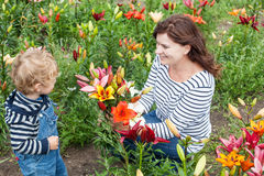 Little toddler boy and young woman on lily field in summer Stock Photos