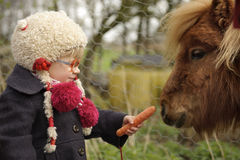 Little toddler feeding a pony Royalty Free Stock Photography