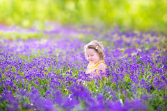 Little toddler girl in bluebell flowers in spring forest Stock Images