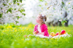 Little toddler girl eating apple in a blooming garden Royalty Free Stock Images