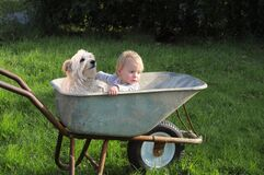 Little toddler girl and her dog sitting in a pushcart