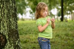 Little toddler girl playing on the park Royalty Free Stock Photography