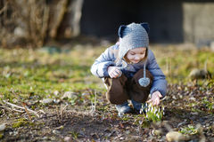 Free Little Toddler Girl Touching Snowdrops Stock Photo - 30191310