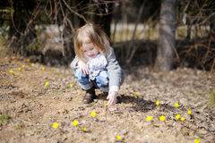 Little toddler girl touching spring flowers Royalty Free Stock Photography